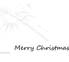 Bamboo Design - Merry Christmas by diLuisa Photography