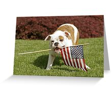 Yankee Doodle Doggie Greeting Card