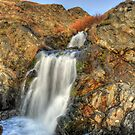 The Waterfall by Randall Scholten