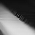 The Soloist by Sara Johnson