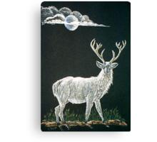 Albino Stag Canvas Print