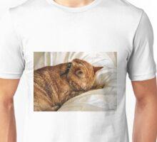HC 33 Cat Unisex T-Shirt