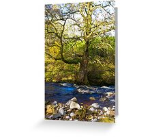 River Cover #2 Greeting Card