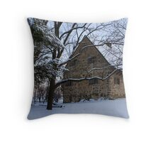 Rustic Winter Scene Throw Pillow