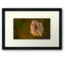 On a cold morning Framed Print