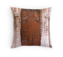 A Door in Arles France Throw Pillow