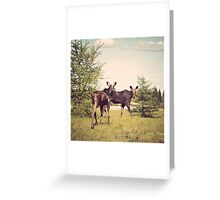 This is Canada Greeting Card