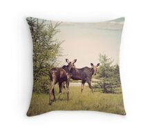 This is Canada Throw Pillow