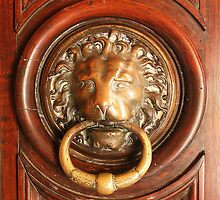 An Elegant Lion Door Knocker in Arles by Laurel Talabere