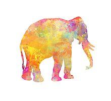 Elephant watercolor  Photographic Print