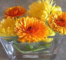 September Sunshine by Gabrielle Battersby