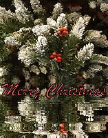 Merry Christmas card 2 by annalisa bianchetti