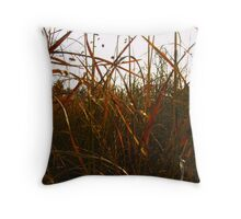 Coloured Grasses Throw Pillow