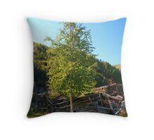 Old Yukon Throw Pillow