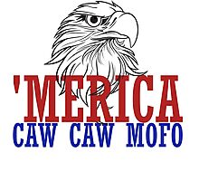 CAW CAW mofo 4th of july Photographic Print