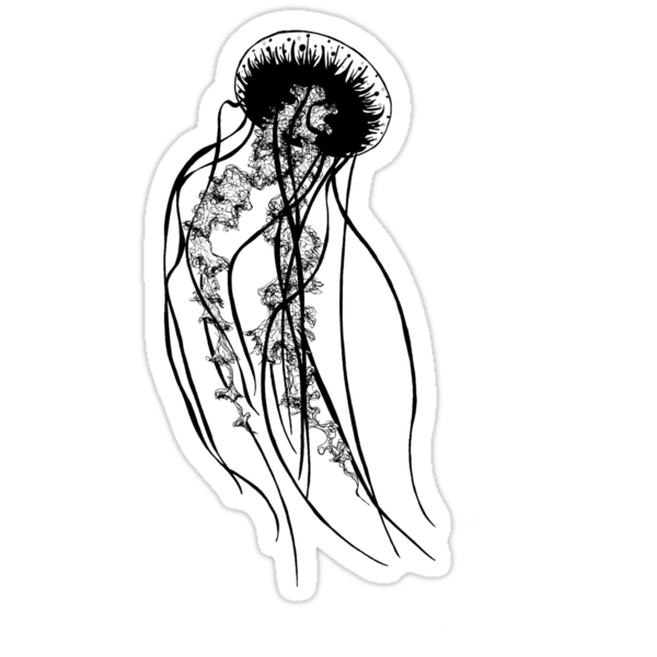 Black Jellyfish by Crystal Peel