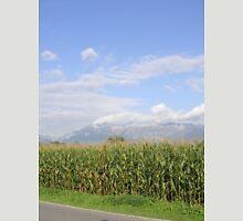 a colourful Liechtenstein landscape Unisex T-Shirt