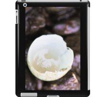 Egg iPad Case/Skin