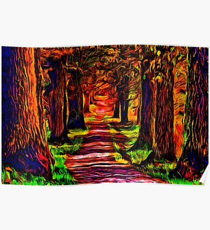 Beautiful Forest Road Fine Art Print Poster