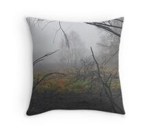 Recovery after the fire Throw Pillow