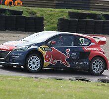 Davy Jeanney - Peugeot 208 WRC by Matt Dean