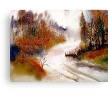 Landscape..Winter Walk Canvas Print