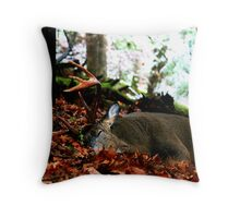 Sleeping Stillness Throw Pillow