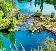 Molonglo Gorge - Trekking the gorge 1 by Geoffrey Thomas
