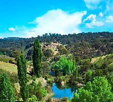 Molonglo Gorge - Trekking the gorge 10 by Geoffrey Thomas