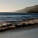 Santa Monica beach and Pasific ocean by loiteke