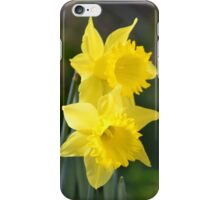 Daffodil Couple iPhone Case/Skin