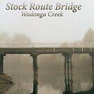stock route bridge wodonga,panorama by dmaxwell