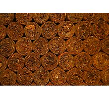 Cuban Cigars Photographic Print