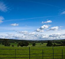Yorkshire Dales From Canon Hall, Barnsley. by Andy Smith