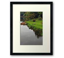 Boyne riverside  Framed Print