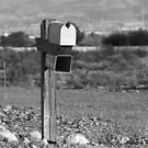 A Mailbox without a Home by Susanne Correa
