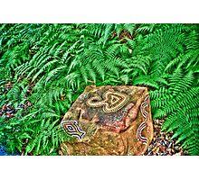 Aboriginal Art Photographic Print