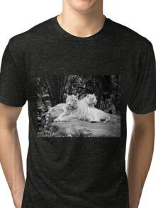 White Siberian Tigers T/shirt Tri-blend T-Shirt