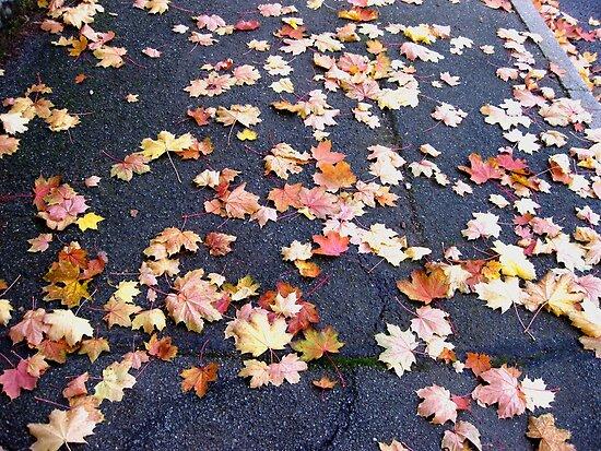 Bustling Sidewalk by Sandy Taylor