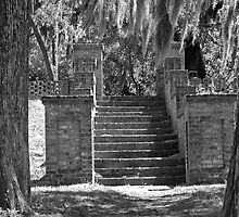 wandering steps of the south by gregoryletts