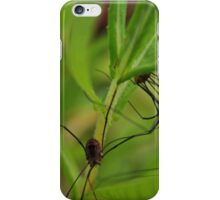 A tangle of legs - image 2 iPhone Case/Skin