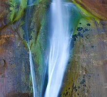 Desert Falls Abstract Patterns and Colors, Calf Creek Falls, Utah by Alan C Williams