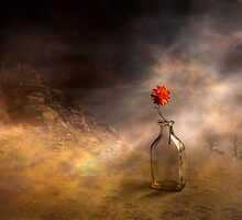 Flower and the bottle by Veikko  Suikkanen