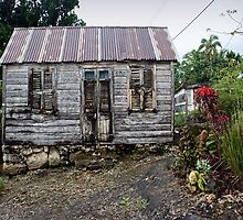 Chattel House (in colour) by wwyz