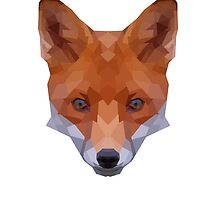 What Does The Fox Say? by Shane Dunn