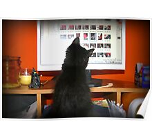 Computer Kitty aka Monkey Poster