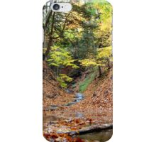 Rustle and Bustle iPhone Case/Skin
