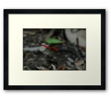 "(13/13) ""Fire Truck Fly"" Framed Print"