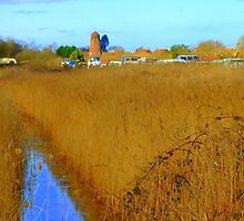 Potter Heigham in march09. by Hopebaby