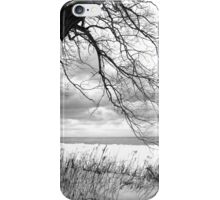 An Erie Calm iPhone Case/Skin
